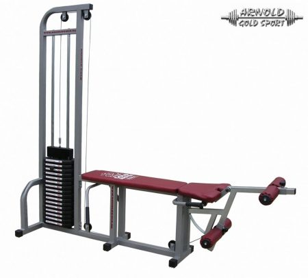 Arnold Classic Curl & Extension machine