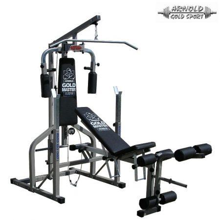 Arnold Iron Gym Extra