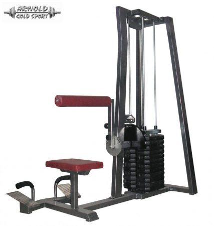 AGM Lower Back machine