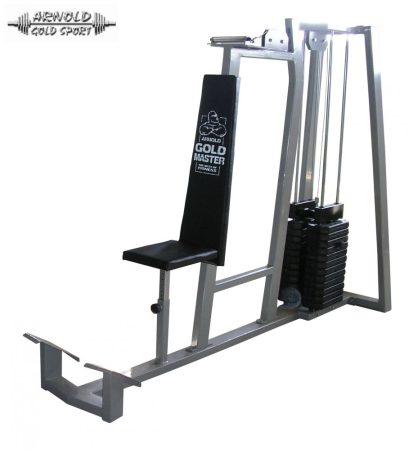 AGM Triceps machine