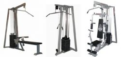 Arnold Gold Master Load-weight machines