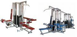 Arnold Master Multi-side Gym Towers